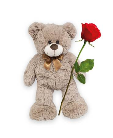 Teddy mit roter Rose